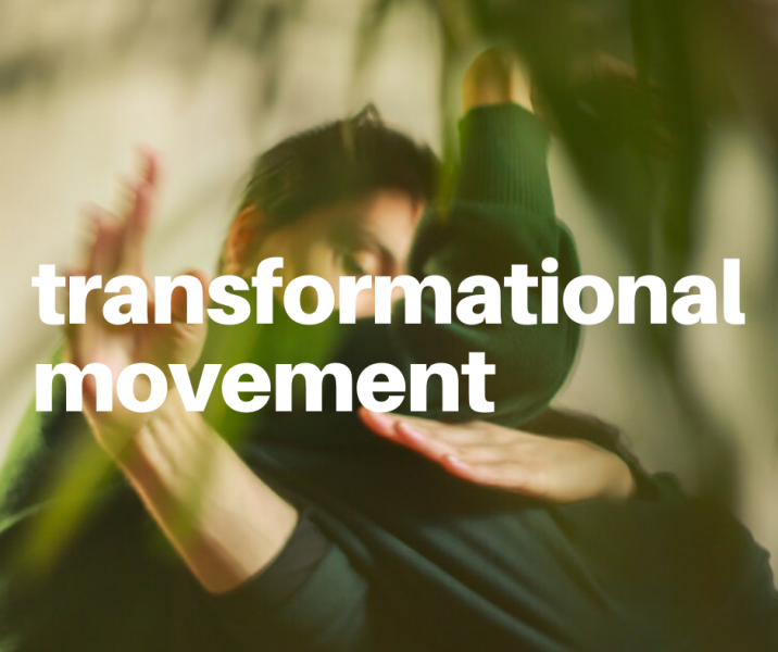 Transformational Movement Online Class