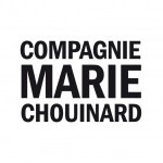 logo of the Compagnie