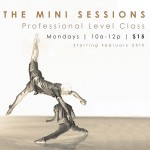 The Mini Sessions - Professional Level Class