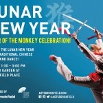 Lunar New Year: Year of the Monkey Celebration!