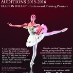 Professional Training Program Audition