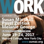 WORK 2017 summer intensive laboratory