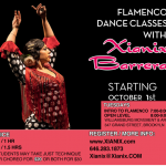 Adult Flamenco