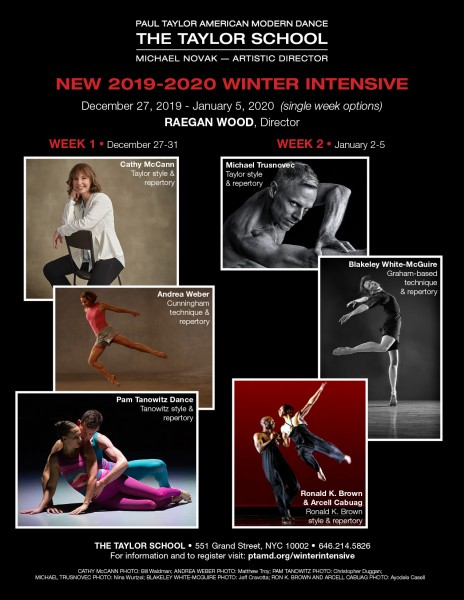 Faculty includes Cathy McCann, Andrea Weber, Pam Tanowitz Dance, Michael Trusnovec, Blakeley White-McGuire, and Ronald K. Brown