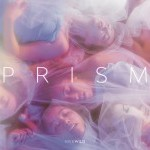 Hivewild presents, PRISM an evening-length dance work premiering December 12-14, 2019 at CPR- Center for Performance Research